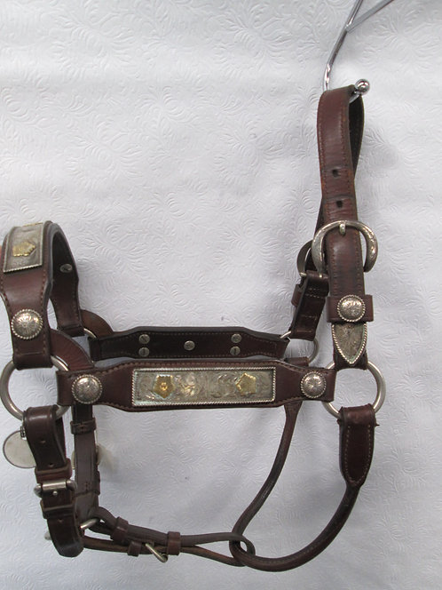 Used Unmarked Billy Royal Show Halter