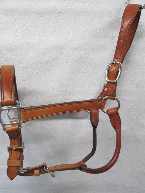 NEW Champion Turf Halter - Ranch Horse
