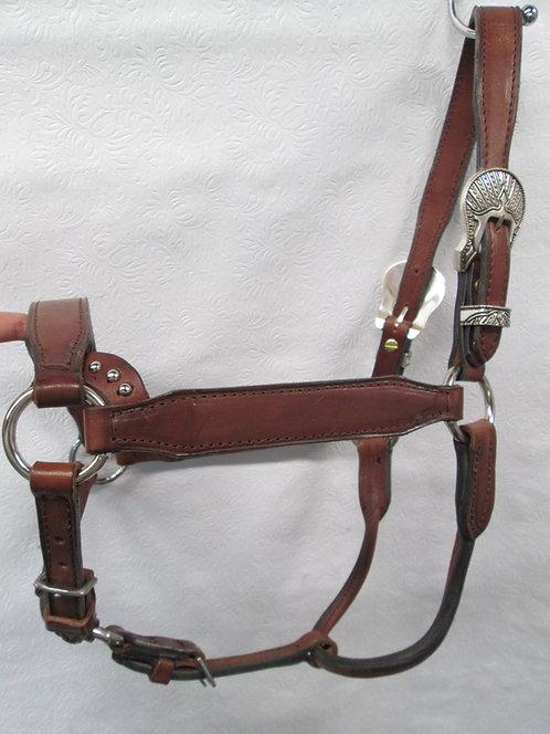 Just 4 Show Saddlery(JFS) Ranch Horse Class Halter