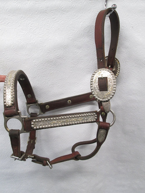 Unmarked Silver Plate,  nice condition Show Halter