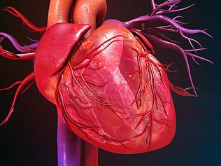 Sopro no Coração: o que é?