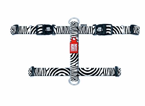 HARNESS - ZEBRA רתמה בעיצוב צבעי זברה מקס ומולי