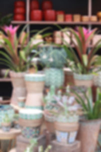 pottery display.jpg