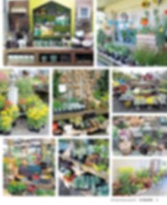 IGCMSPI17_MerchandisingwithStyle2.jpg