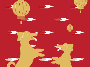 Chinese New Year Kit