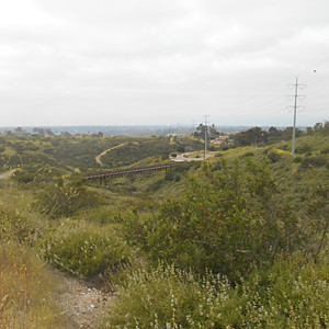 Mission Trails Hike