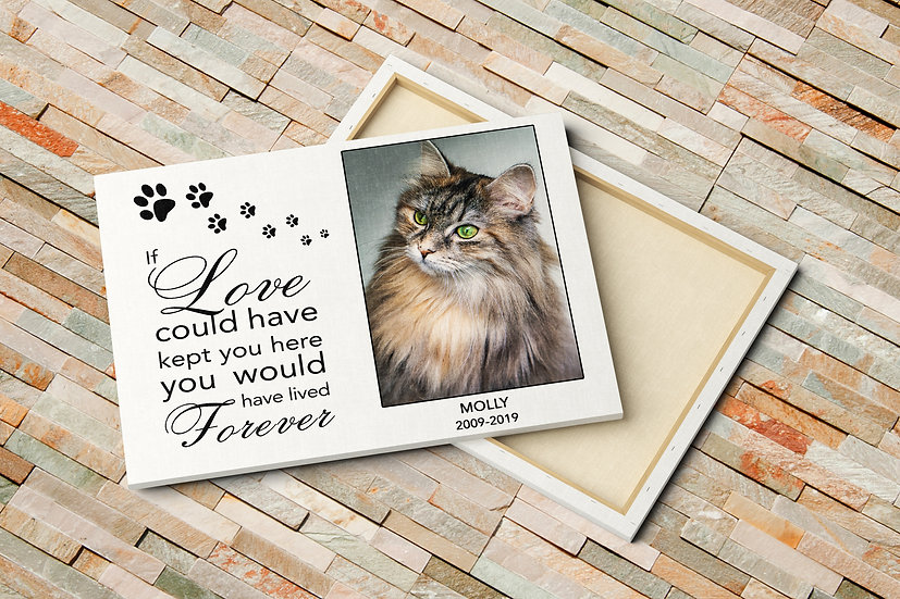 If Love Could Have Kept You Here Pet Loss Gift, Photo To Canvas