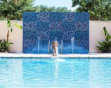 outdoor-swmming-pool.jpg