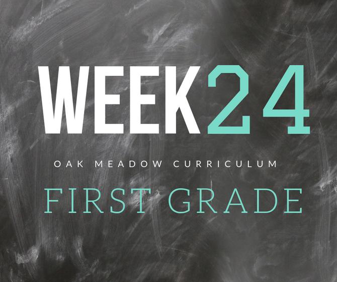 Homeschooling - 1st Grade Week 24 Oak Meadow Curriculum Supplements