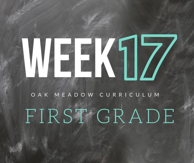 Homeschooling - 1st Grade Week 17 Oak Meadow Curriculum Supplements