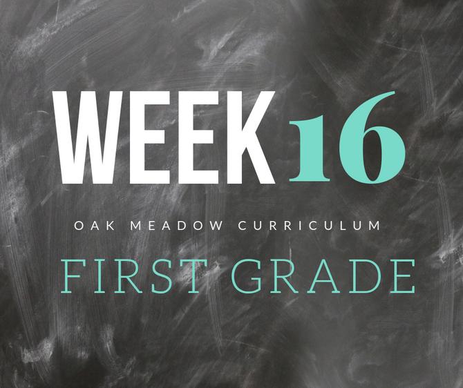 Homeschooling - 1st Grade Week 16 Oak Meadow Curriculum Supplements
