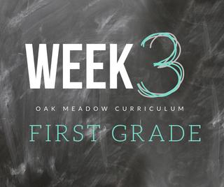 Homeschooling - 1st Grade Week 3 Oak Meadow Curriculum Supplements