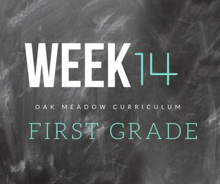 Homeschooling - 1st Grade Week 14 Oak Meadow Curriculum Supplements