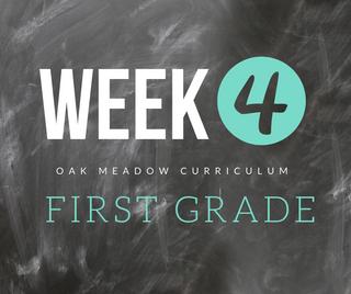 Homeschooling - 1st Grade Week 4 Oak Meadow Curriculum Supplements