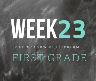 Homeschooling - 1st Grade Week 23 Oak Meadow Curriculum Supplements