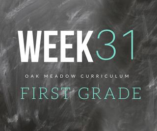 Homeschooling - 1st Grade Week 31 Oak Meadow Curriculum Supplements