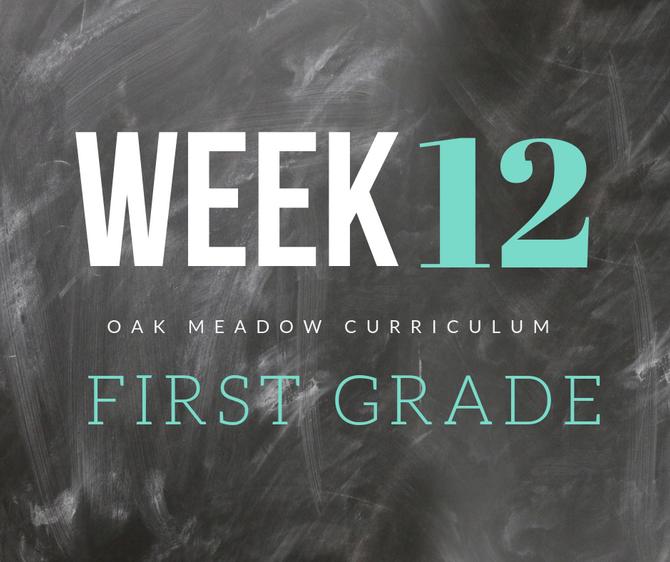 Homeschooling - 1st Grade Week 12 Oak Meadow Curriculum Supplements