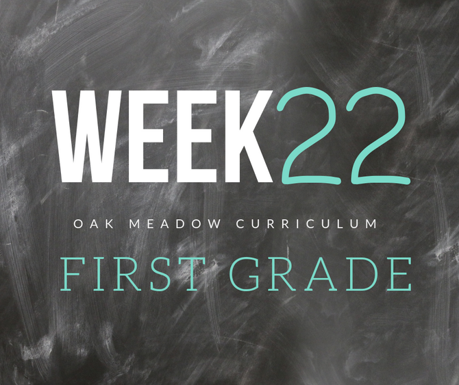 Homeschooling - 1st Grade Week 22 Oak Meadow Curriculum Supplements
