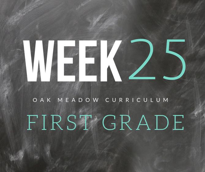 Homeschooling - 1st Grade Week 25 Oak Meadow Curriculum Supplements