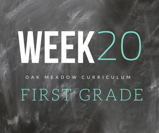 Homeschooling - 1st Grade Week 20 Oak Meadow Curriculum Supplements
