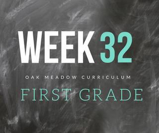 Homeschooling - 1st Grade Week 32 Oak Meadow Curriculum Supplements