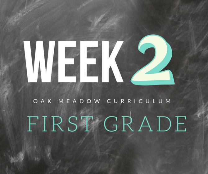 Homeschooling - 1st Grade Week 2 Oak Meadow Curriculum Supplements