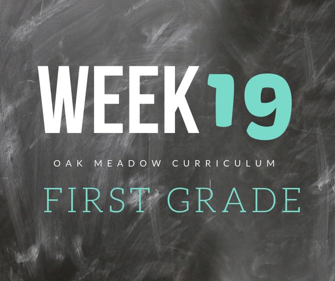 Homeschooling - 1st Grade Week 19 Oak Meadow Curriculum Supplements