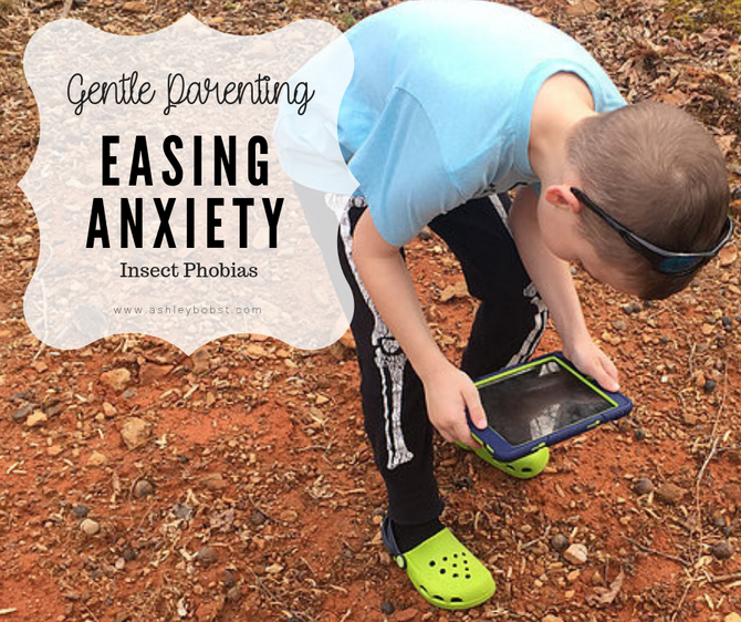 Easing Anxiety -Entomophobia (A Fear of Insects.)
