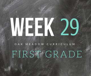 Homeschooling - 1st Grade Week 29 Oak Meadow Curriculum Supplements