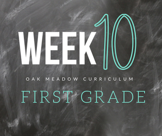 Homeschooling - 1st Grade Week 10 Oak Meadow Curriculum Supplements