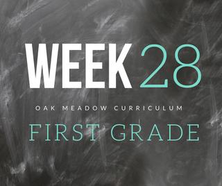 Homeschooling - 1st Grade Week 28 Oak Meadow Curriculum Supplements