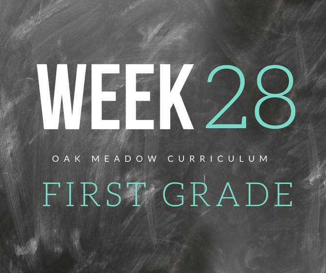 Homeschooling - 1st Grade Week 28 Oak Meadow Curriculum Supplements