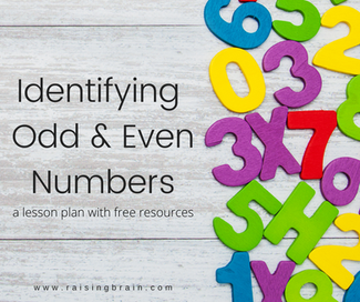 Identifying Odd and Even Numbers (A Lesson Plan with Free Resources)