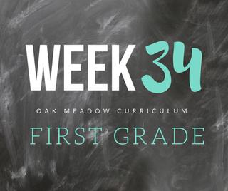 Homeschooling - 1st Grade Week 34 Oak Meadow Curriculum Supplements