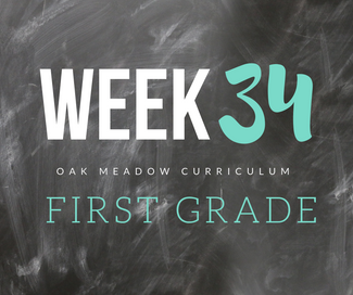 Homeschooling - 1st Grade Week 34 Oak Meadow Curriculum Supplements