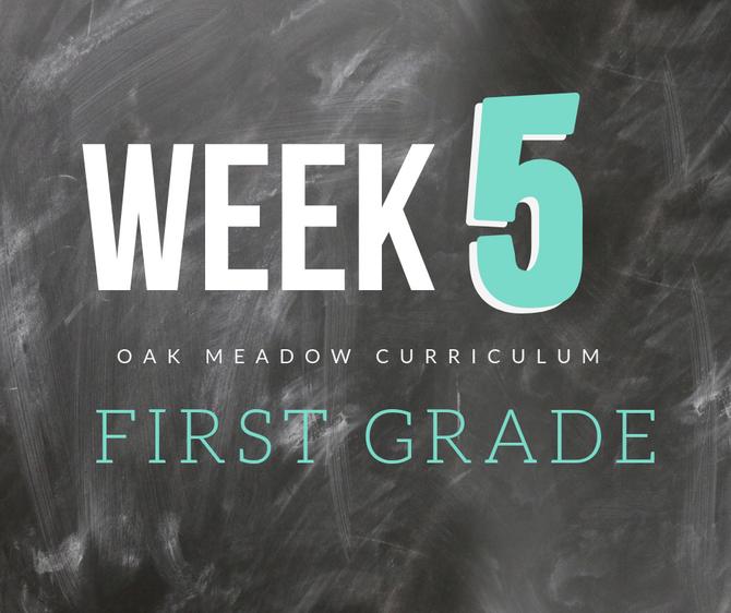 Homeschooling - 1st Grade Week 5 Oak Meadow Curriculum Supplements