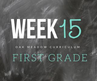 Homeschooling - 1st Grade Week 15 Oak Meadow Curriculum Supplements