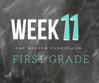 Homeschooling - 1st Grade Week 11 Oak Meadow Curriculum Supplements