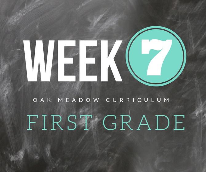 Homeschooling - 1st Grade Week 7 Oak Meadow Curriculum Supplements