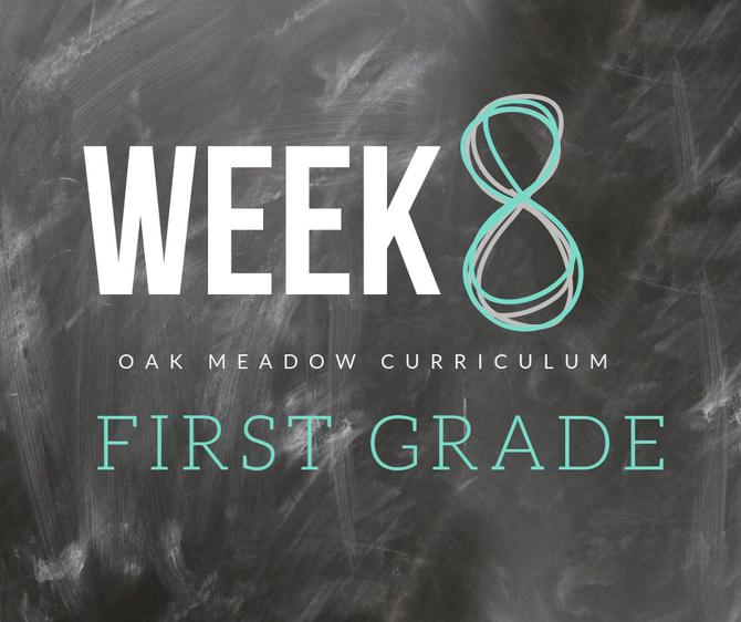 Homeschooling - 1st Grade Week 8 Oak Meadow Curriculum Supplements