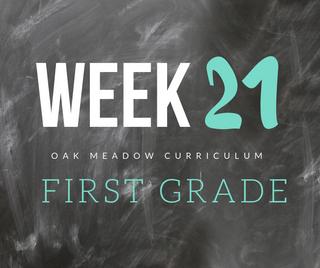 Homeschooling - 1st Grade Week 21 Oak Meadow Curriculum Supplements