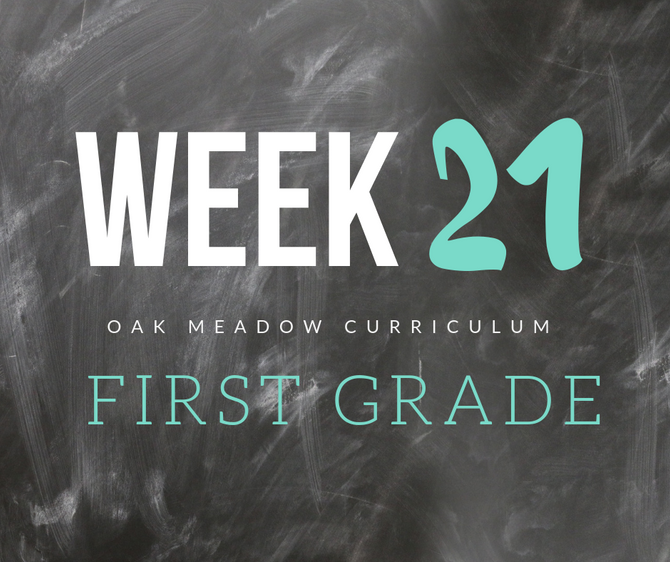 Homeschooling - 1st Grade Week 21 Oak Meadow Curriculum Supplements