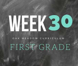 Homeschooling - 1st Grade Week 30 Oak Meadow Curriculum Supplements