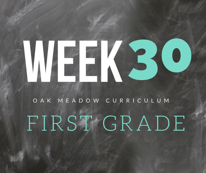 Homeschooling - 1st Grade Week 30 Oak Meadow Curriculum Supplements