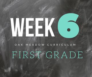 Homeschooling - 1st Grade Week 6 Oak Meadow Curriculum Supplements
