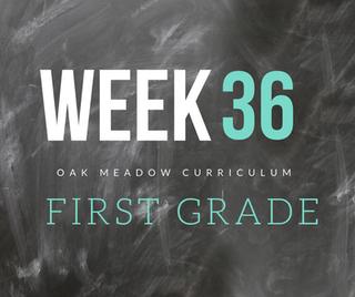 Homeschooling - 1st Grade Week 36 Oak Meadow Curriculum Supplements