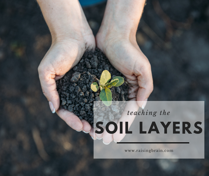 Activities for Teaching the Soil Layers