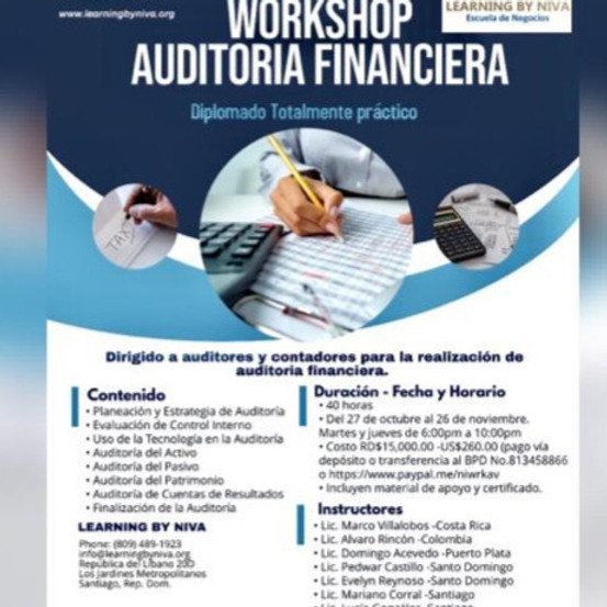 WORKSHOP AUDITORIA FINANCIERA