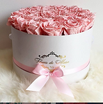 fleurs de muse_image.PNG