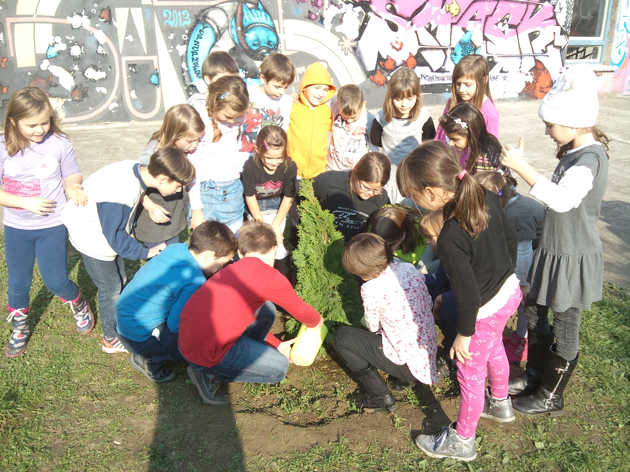 Kako raste naše stablo...